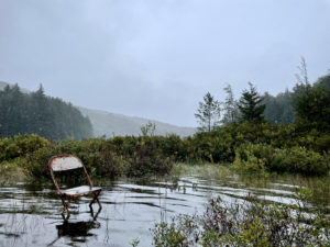 folding chair in lake in the woods