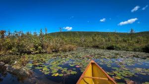 Labrador Pond